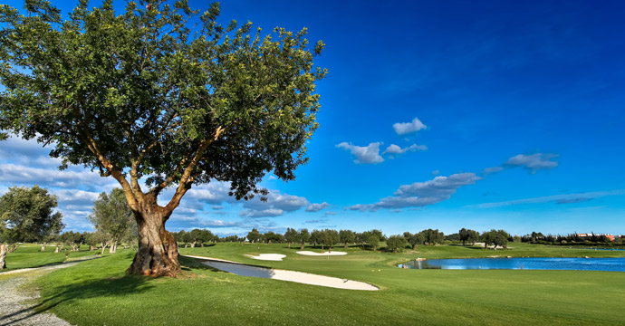 Transfers from Faro Airport to Quinta de Cima Golf Course